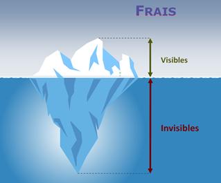 iceberg-frais
